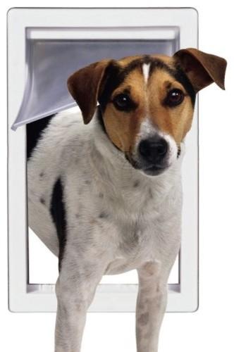 Ideal Storm Door Dog Door contemporary-pet-supplies