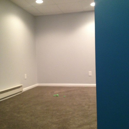 What Goes With Gray: Color Dilemma! Greenish Gray Carpet