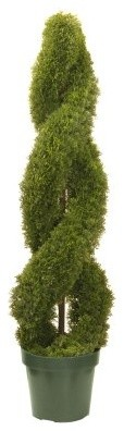 Double Cedar Spiral with Green Pot modern-indoor-pots-and-planters