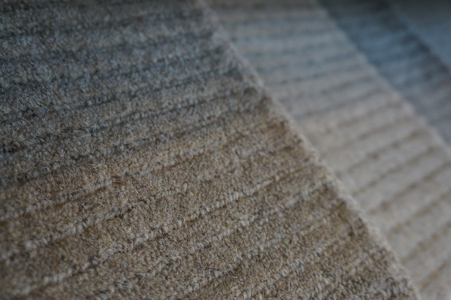 Showroom Products transitional-carpet-tiles
