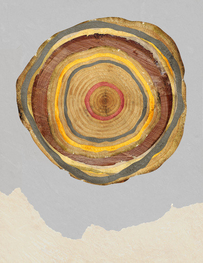 Tree Rings Art Print contemporary-artwork