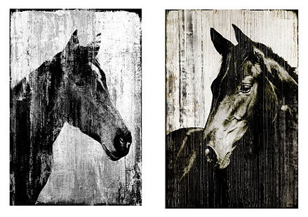 Set of 2 Equine Portrait Giclees traditional-artwork