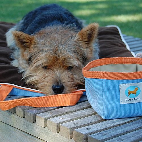 Jennifer Brooks Travel Tote Pet Bed Dog Bed traditional-pet-beds