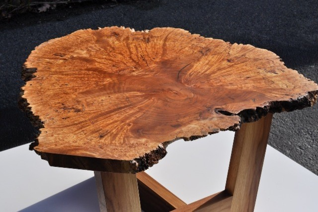 Maple Burl Table Contemporary Coffee Tables