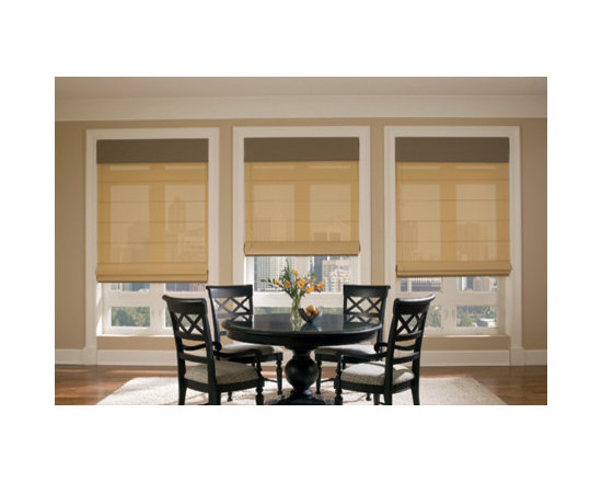 Hunter Douglas Designer Screen Shades -