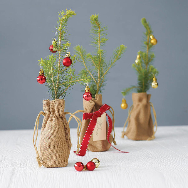 Little Norway Spruce Christmas Tree