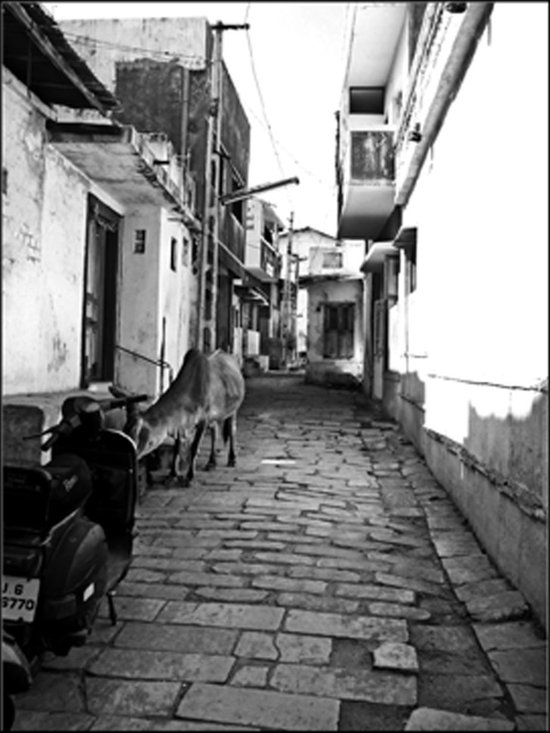 Streets of India - Original Black and White Print, Film Photography. 8.5 x 11 in., Travel Photography