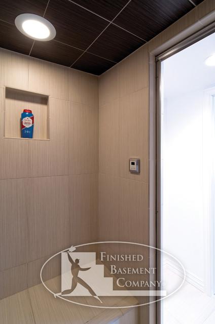Basement Shower contemporary-bathroom