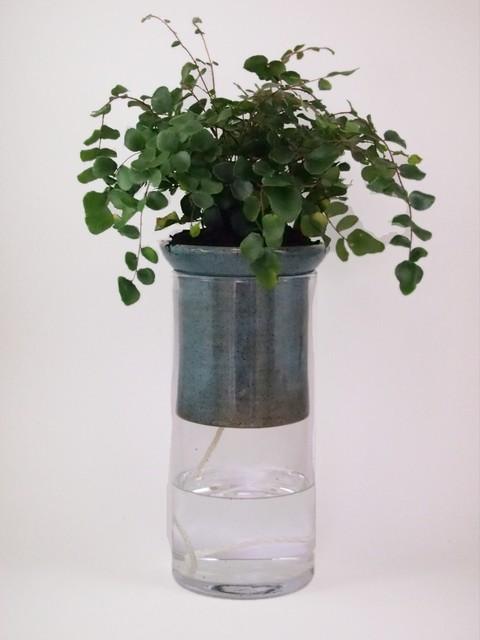 Beatus Self Watering Planters