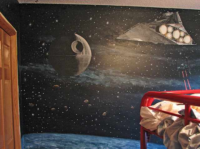 Star wars murals traditional minneapolis by walls of for Death star wall mural