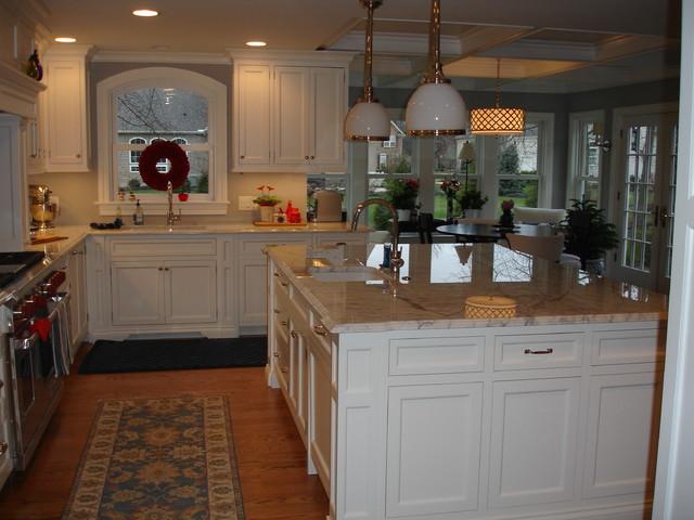 Metropolitan Suburb Home Addition traditional-kitchen