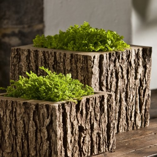 Campania International Mini Low Reef Square Cast Stone Planter Aged Limestone contemporary-outdoor-planters