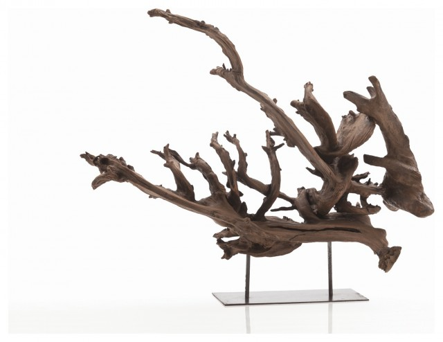 Kazu Dragon Tree Root Sculpture in Natural eclectic-sculptures