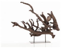 Kazu Dragon Tree Root Sculpture in Natural eclectic artwork