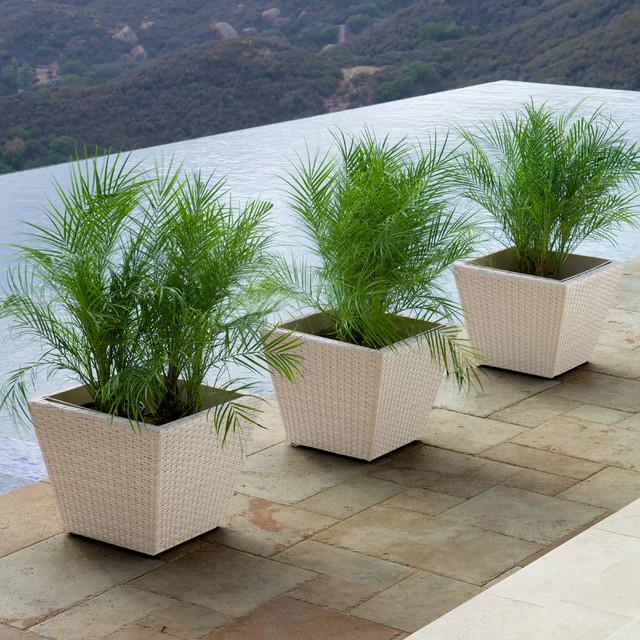 Portofino 3pc Woven Planters in Chalk Contemporary
