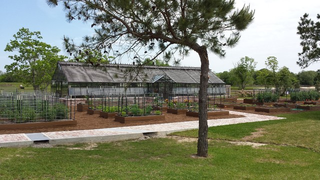 Beaumont Tx Greenhouse
