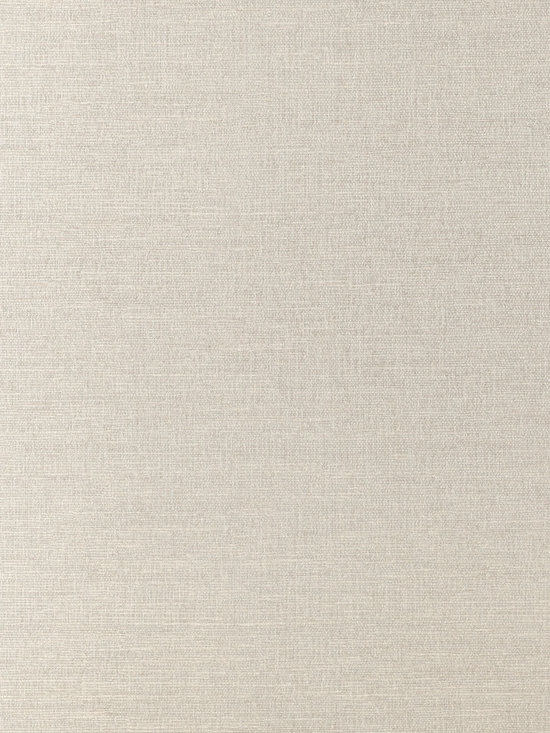 Texture Resource Volume 4 - Flat Shots - Coastal Sisal wallpaper in Silver (T14115) from Thibaut's Texture Resource Volume 4 Collection