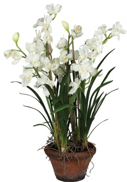 Potted cymbidium orchid 44 h traditional artificial for Indoor decorative live plants