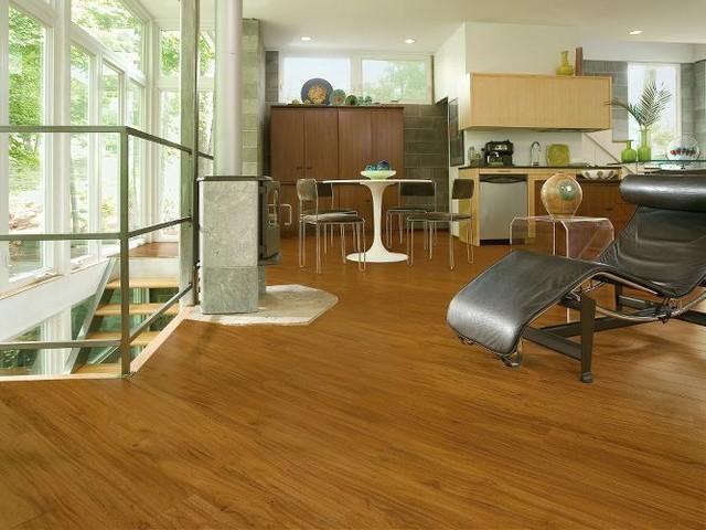 Vinyl flooring contemporary living room