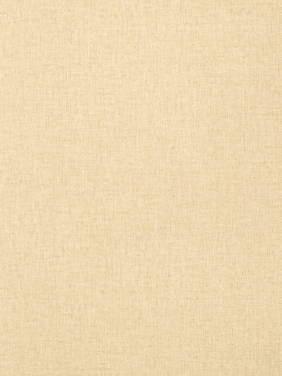 Texture Resource Volume 4 - Flat Shots - Flanders wallpaper in Cream (T14156) from Thibaut's Texture Resource Volume 4 Collection