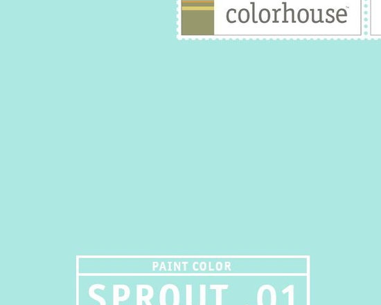 Colorhouse SPROUT .01 - Colorhouse SPROUT .01: Like a baby robin's egg. Soft and fuzzy like fleece. Sweet sleep. Gender neutral.