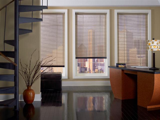 Rollers & Screens modern-window-treatments
