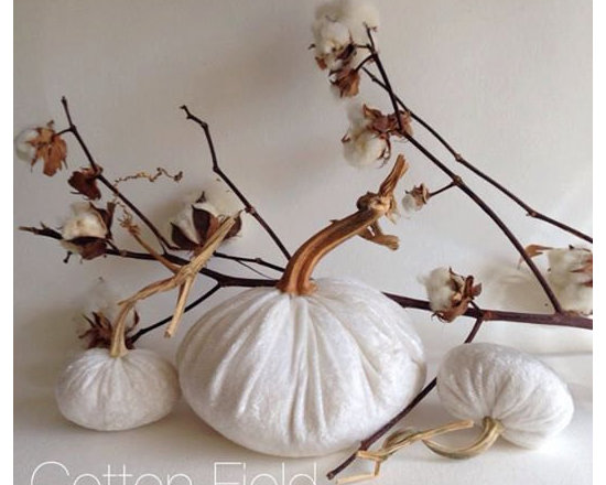 Cotton Field White Crushed Velvet Pumpkins by Nanticoke Creek, Set of 3 -