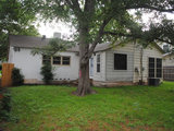 home design Houzz Tour: Up and Out Around a Heritage Tree (18 photos)