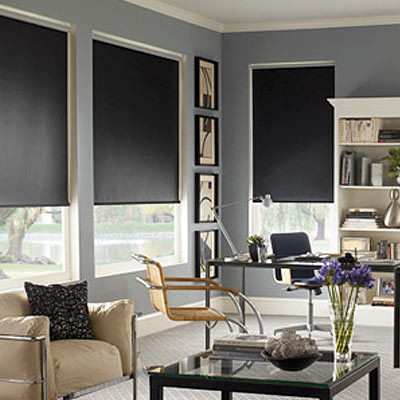 blindsaver basics roller shades contemporary window