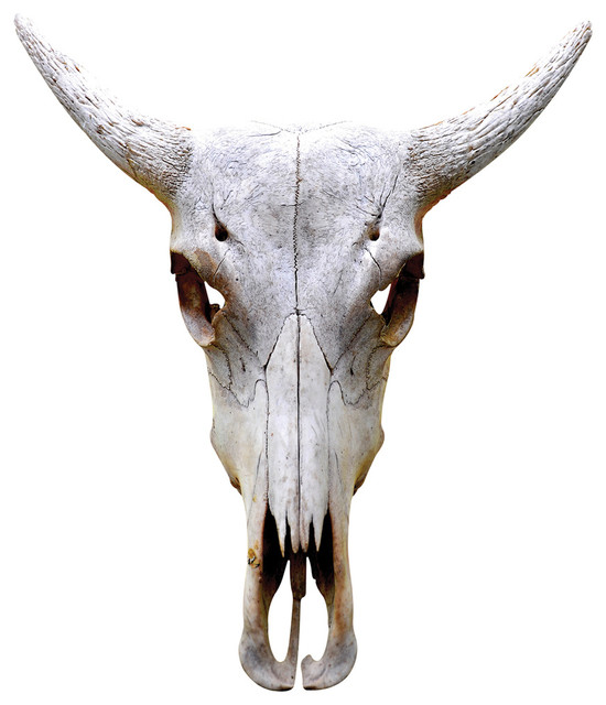 Traditional Antelope Bull Adhesive Wall Decal