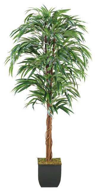 D&W Silks 6' Weeping Ficus Tree in Square Metal Planter traditional-plants
