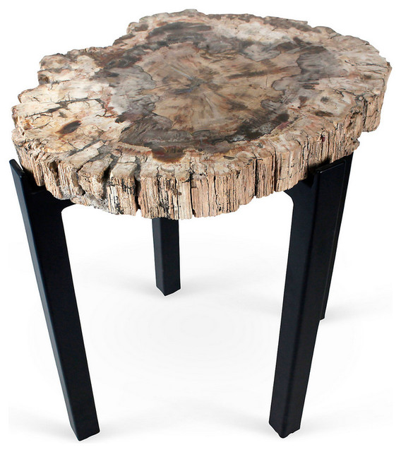 Petrified Wood Side Table eclectic-side-tables-and-end-tables