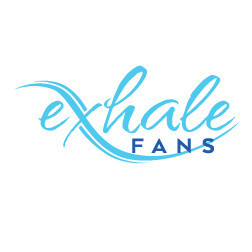 Exhale fans first truly bladeless ceiling fan Exhale fan review