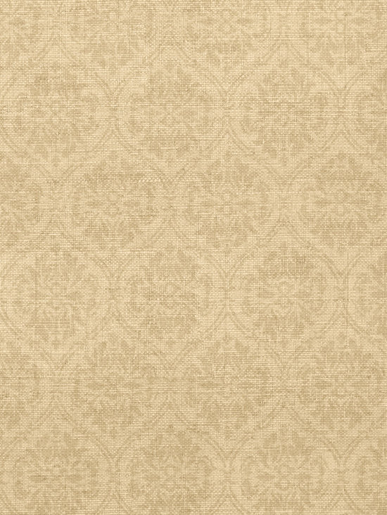 Texture Resource Volume 4 - Flat Shots - Bankun Damask wallpaper in Sand (T14120) from Thibaut's Texture Resource Volume 4 Collection