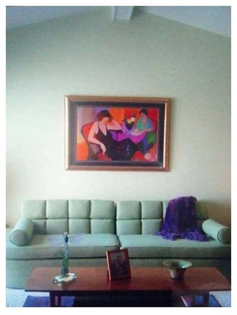 Redecorating Midcentury Living Room Detroit By Color Coach Design