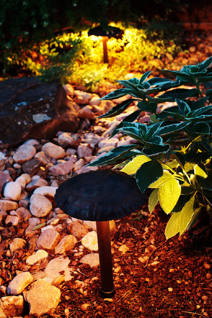 Exceptional Landscape Lighting traditional