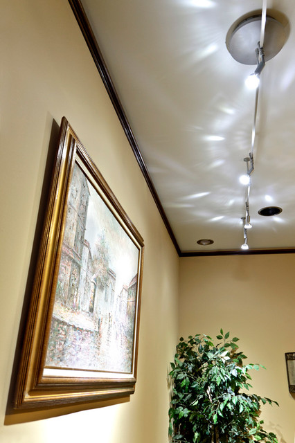 led track lighting for artwork accent traditional
