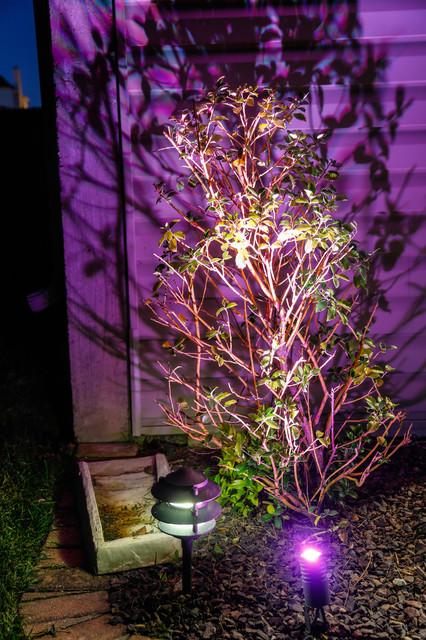 LED Landscape Lighting Color Changing Uplight and Tier Fixture traditional-landscape