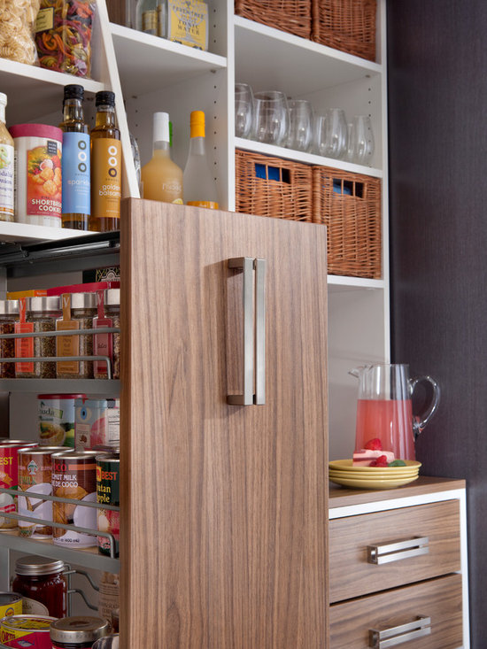 Pantry Pull-out Cabinet & Organizer -