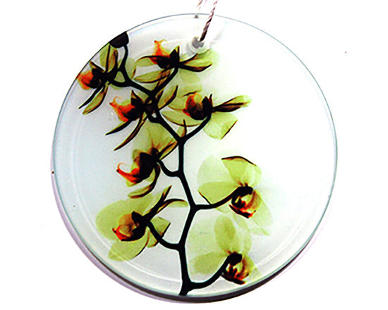 Radiant Art Studios - X-Ray Photograph Glass Ornament/Suncatcher with Orchids, Bright Yellow Orchid - Stunning 3.5 inch frosted glass ornaments with X-Ray photographs of Orchids created by surgeon and X-Ray photographer Dr. Paula Fontaine.  May also be used as sun catcher. Hemp cord provided.
