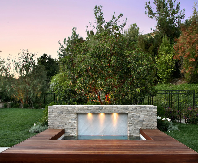 AMS Landscape Design Studios, Inc contemporary pool