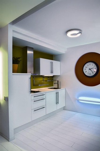 Custom Cabinets contemporary-kitchen-cabinets