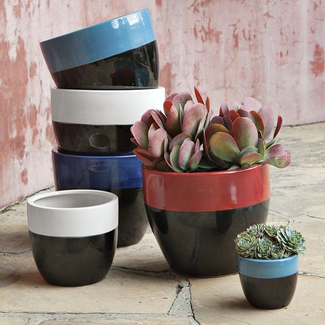 Claude Planters modern-indoor-pots-and-planters