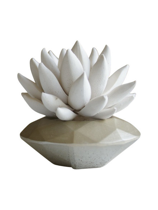 Waterstone Succulents - White Succulent Sculpture, Champagne, Round Geometric - A handmade succulent sculpture with interchangeable container. The perfect accessory for the modern home or office, and a great gift for any occasion. Creates the feel of a live plant minus any of the maintenance. Beautiful as an individual decorative accessory or grouped into sets of 3 or more.