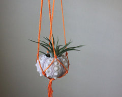 Air Plant Pot. Neon Macrame Hanger with by ThriftedandMade on Etsy