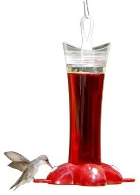 Perky-Pet Glass Tube Hummingbird Feeder - Contemporary - Bird Feeders - by Target