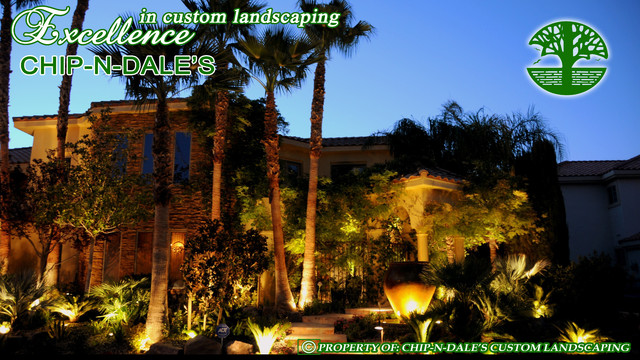 CHIP-N-DALE'S CUSTOM LANDSCAPING LOW VOLTAGE LIGHTING mediterranean-landscape