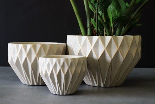 Geometric pot plants by Rockett St George
