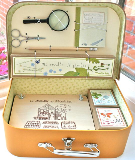 Little Botanist's Kit traditional-kids-toys
