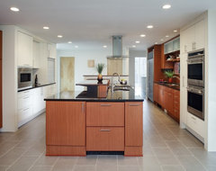 Washington D.C. Dream Kitchen modern-kitchen